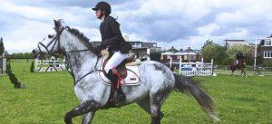 Horse Classes